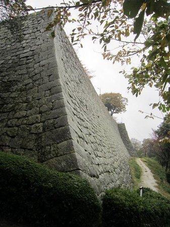 Marugame Castle: 石垣