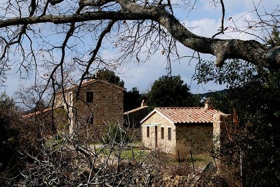 Podere Campopiano: Il casale e la casetta