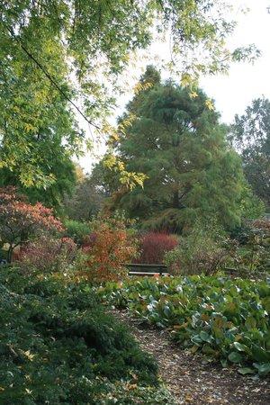 Planten un Blomen: Park in autumn