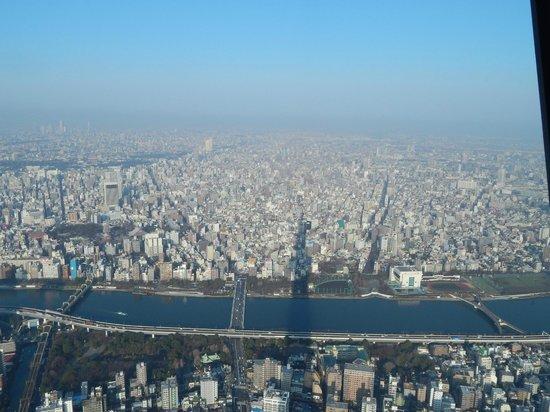 Tokyo Skytree: City View