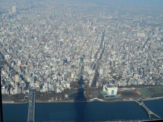 Tokyo Skytree: View