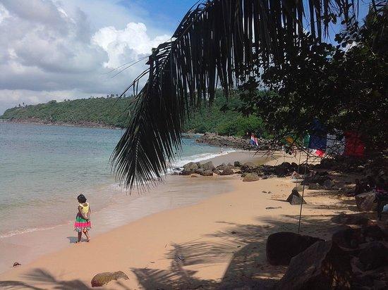 Home Stay Strand: UNAWATUNA JUNGLE BEACH