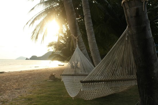 Holiday Beach Resort: Гамак на пляже!