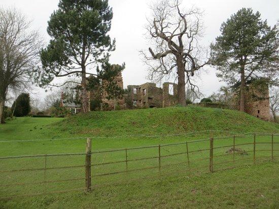 The Bridge House: Wilton castle from Bridge House garden