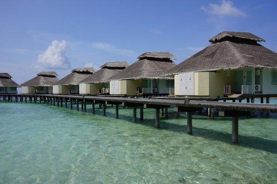 Ellaidhoo Maldives by Cinnamon : Chaaya Reef Water Villas