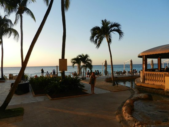 Marriott Grand Cayman Restaurant Reviews