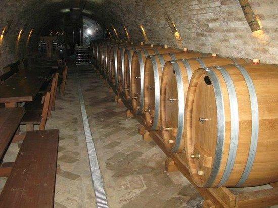 JOSIC: New cellar wine