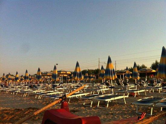 Camping Metauro Beach