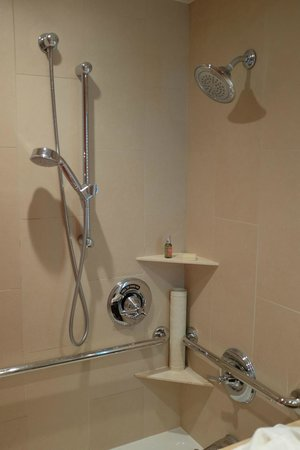 The Heathman Hotel: Bath with hand shower - rare in US hotels