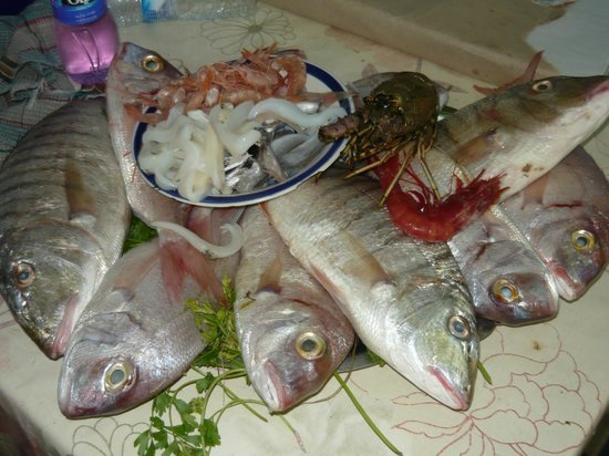 Agadir Fishing Port : Рыбный микс до приготовления