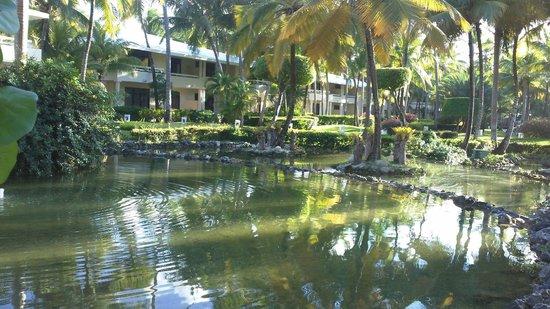 The Reserve at Paradisus Punta Cana : O Hotel, um verdadeiro paraíso