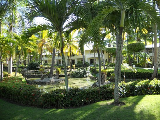 The Reserve at Paradisus Punta Cana: O hotel