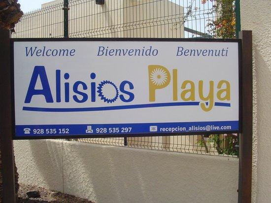 Alisios Playa: Main Entrante
