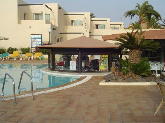 Alisios Playa : Pool