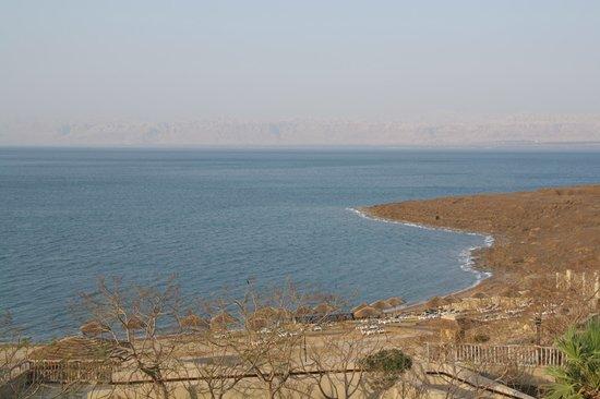 Holiday Inn Resort Dead Sea: La zona de playita privada del hotel detrás de las sombrillas