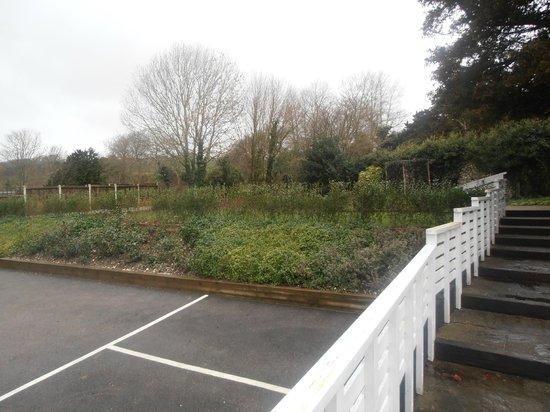 The Marquis at Alkham : Garden area
