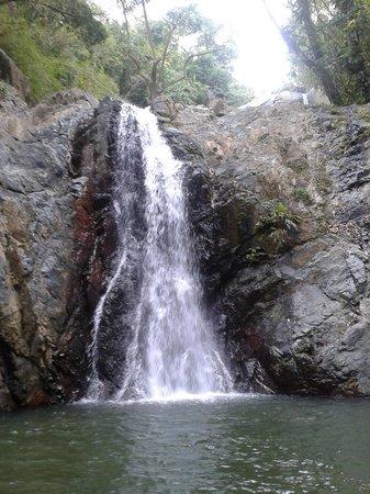 Castara Retreats: small falls found near castara