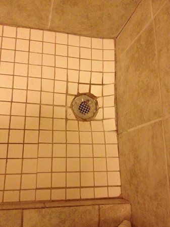 Ramada Sarasota: Poor Grout Work
