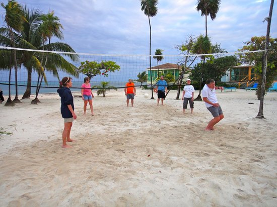 Blackbird Caye Resort : Volleyball