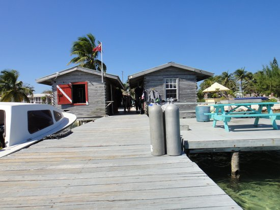 Blackbird Caye Resort : pier