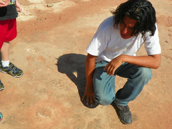 Dinosaur Tracks: Our guide, Dale