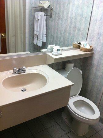 Travelodge Hotel LAX Los Angeles Intl : Banheiro