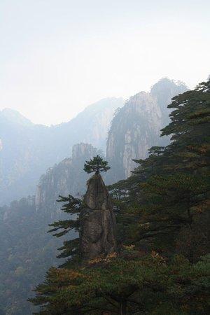 Mt. Huangshan (Yellow Mountain): Huangshan views