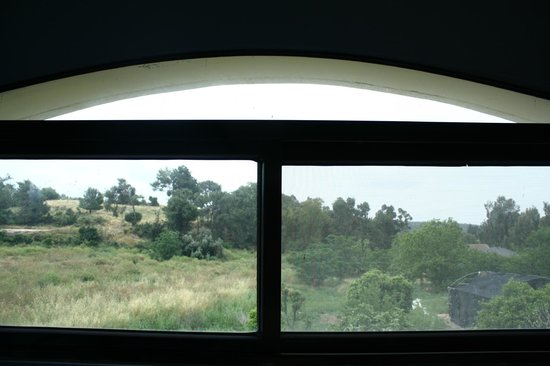 Cactus Tzimmer: view to the back