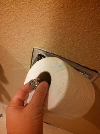 Howard Johnson Inn & Suites Tacoma Near McChord AFB: Side of TP rolls