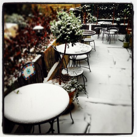 Chelsea Pines Inn: Back Garden covered in snow
