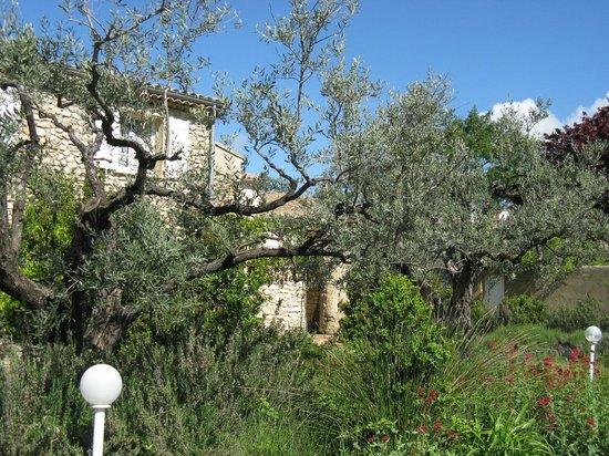 Domaine du Chene Vert : le jardin