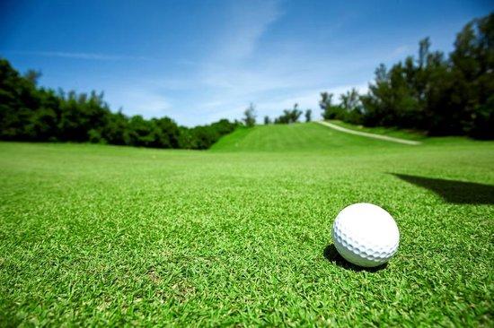 Flair Hotel Zur Eiche: Golfen auf drei Plätzen in direkter Umgebung
