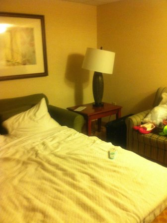 Country Inn & Suites by Radisson, Rochester Airport-University Area, NY: PULLOUT SLEEPER SOFA