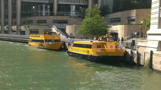 Chicago Water Taxi connects business, tourist, and cultural hotspots around Chicago.