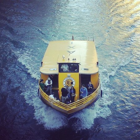 Chicago Water Taxi: Skips crowded city streets as you enjoy our beautiful river and architecture!