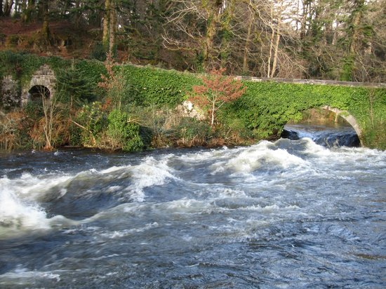 Ballynahinch Castle Hotel: More water than usual