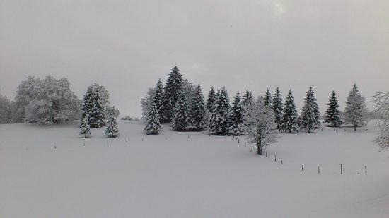 Gite la Vie Neuve: Gîte la Vie Neuve, Les Molunes, Jura, France