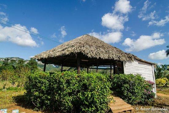 La Autentica: Tabakplantagen rund um Vinales