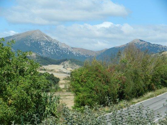 Casa de la Cadena: Gaztelu y Txurregi