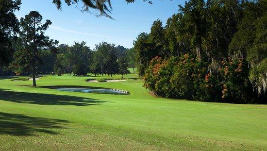Ocala National Golf Club: Hole #17 at Ocala National