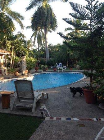 Casa Virgilios : Pool