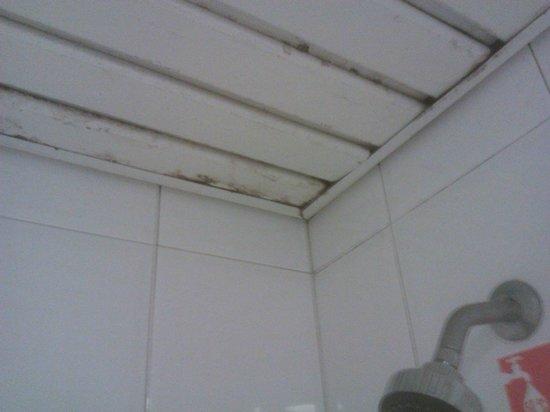 Meliá Las Antillas: Mould above shower in bathroom