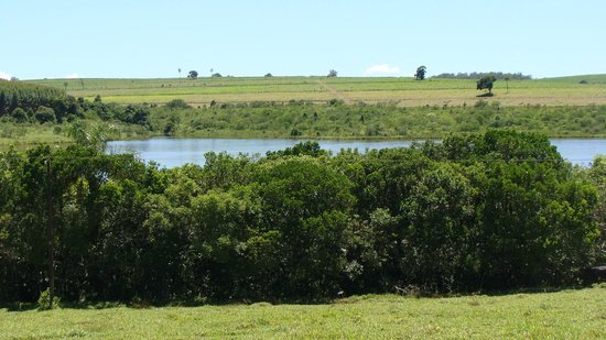 Pousada Jacare Pepira: Nearby lake