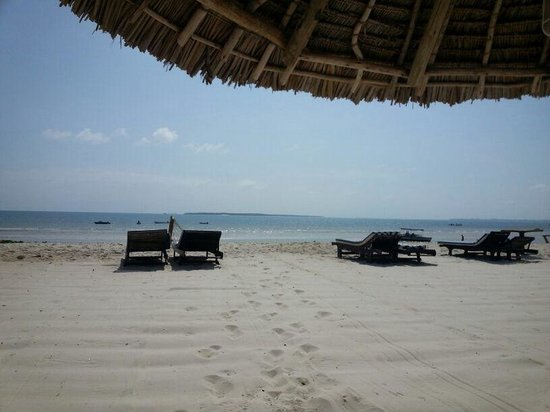 Jangwani Seabreeze Resort 사진