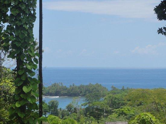 Red Frog Beach Island Resort & Spa : Views from villa 27, Tranquillo