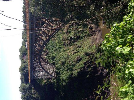 Ilala Lodge: В завершение пешей прогулки по водопаду