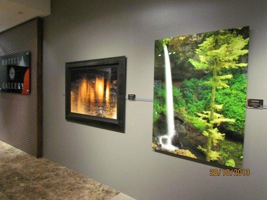 Natural Wonders Gallery