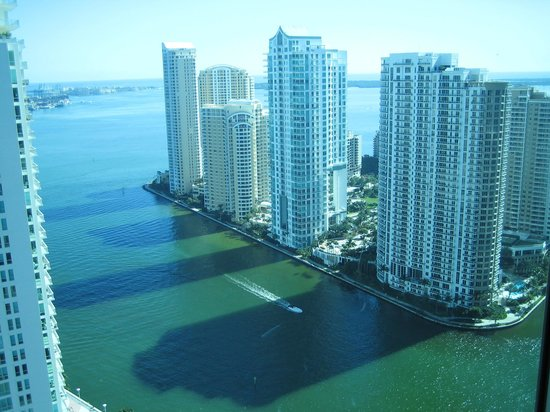 JW Marriott Miami: vista de Miami doquarto do Marriott