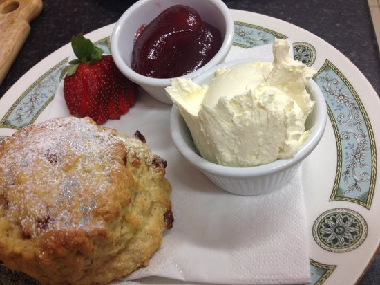 The Little Teapot: Traditional fruit scone and jam and cream