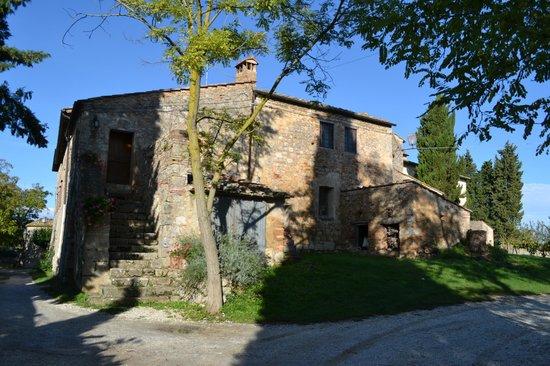 Casolare di Libbiano: grapes on property